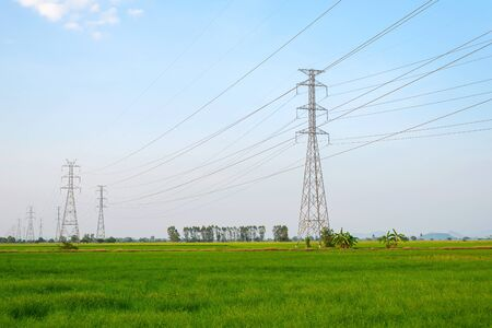 High voltage power transmission pole in the green field