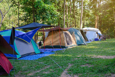 Camping tent in the forest, tourism, and relaxation in nature 版權商用圖片