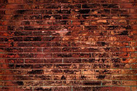 stucco: Brick wall background.