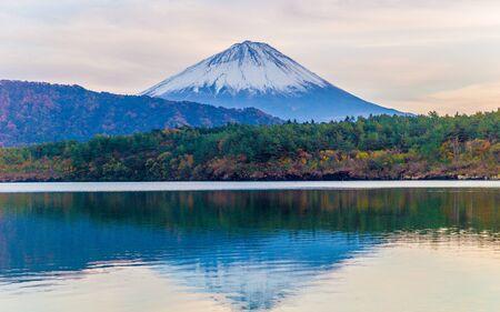 saiko: Travel Japan : Fujisan Fuji Mountain view from Saiko Lake Yamanashi Japan