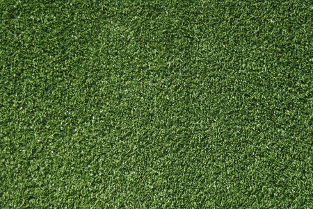 grass blades: Realistic grass texture on top view.