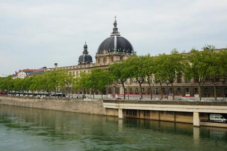 riverside tree: View of Lyon