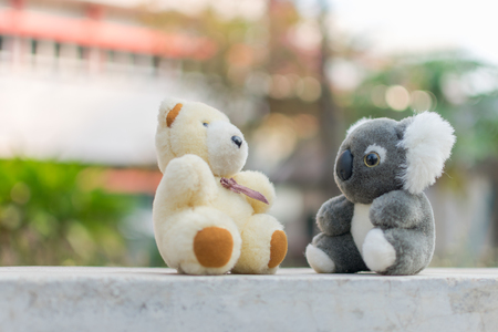 Bear and koala dolls, they are friends.