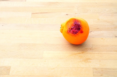 orange left on kitchen table and decomposing