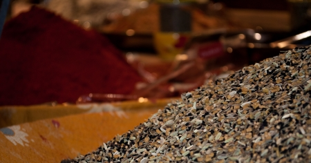 essences: Indian spices and herbs for sale