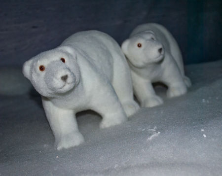 modeling of polar bears walking in the snow photo