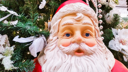 reassuring: the reassuring and cheerful face of Santa Claus
