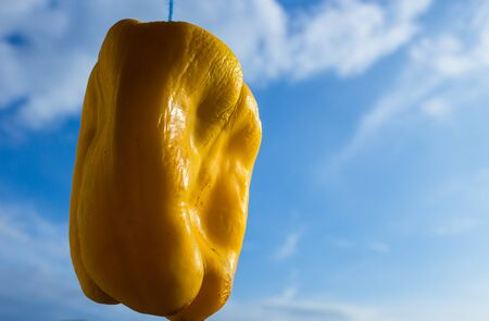 blimp: pepper floating in the sky like a balloon Stock Photo