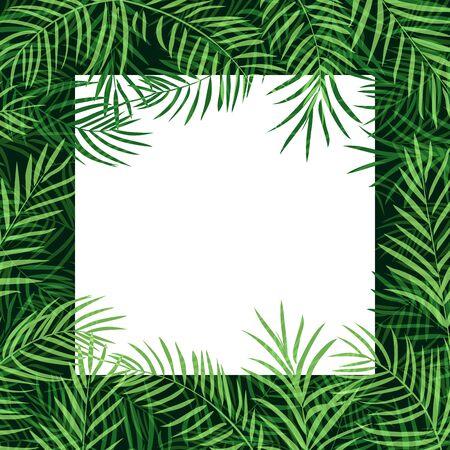 10eps: border frame tropical palm leaf Illustration