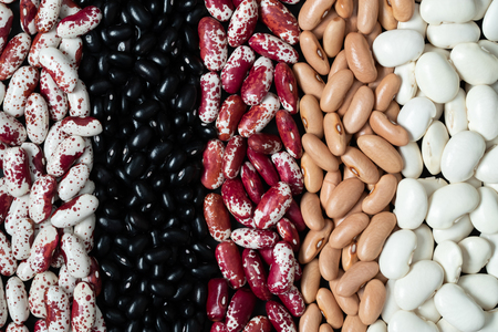 The ranks of different beans. Multicolored legumes textures