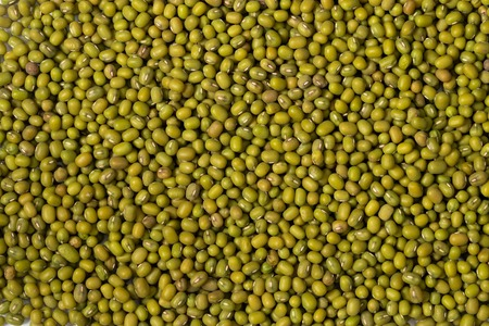 Green lentils full background, top view
