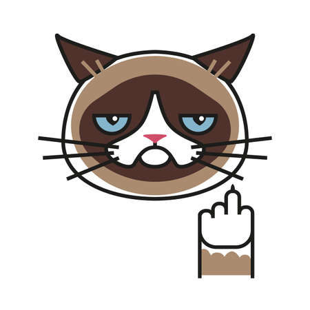 Grumpy cat making gesture with middle finger