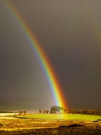 嵐の中の虹