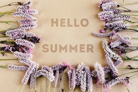 lavande: beautiful natural frame with pink flowers and hello summer text on craft background