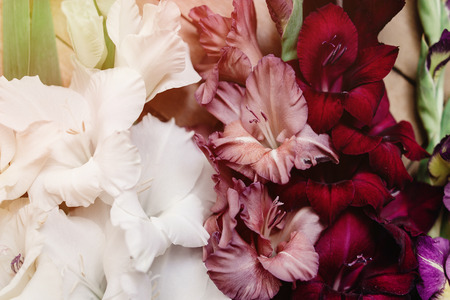 amazing wallpaper: beautiful gladiolus in different colors flowers on wooden rustic background, arrangement concept, amazing wallpaper