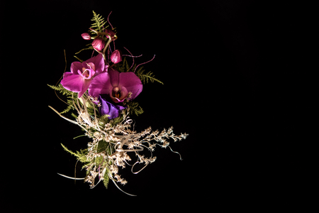 unusual violet boutonnieres with orchids on black background for gorgeous wedding ceremony Stock Photo