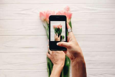 instagram fotograaf, bloggen workshop concept. hand met telefoon en het nemen van foto van stijlvolle bloem plat lag. roze tulpen op witte houten rustieke achtergrond ruimte voor tekst