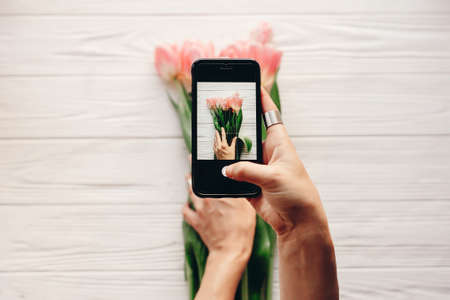 instagram photographer, blogging workshop concept. hand holding phone and taking photo of stylish flower flat lay. pink tulips on white wooden rustic background.space for text 版權商用圖片 - 72145142