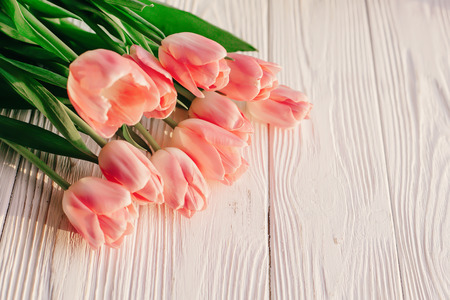 beautiful pink tulips on white rustic wooden background. tender view of spring flowers in soft morning sunny light with space for text. blogging advertising concept Banco de Imagens - 72145277