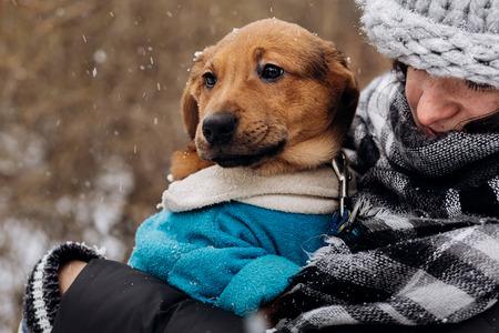 stijlvolle hipster vrouw speelt met schattige puppy in besneeuwde koude winter park en streling. momenten van echt geluk. adoptie concept. dieren redden