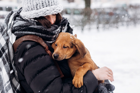 stylish hipster woman hugging and smiling cute puppy in snowy cold winter park and caressing. moments of true happiness. adoption concept. save animals Stock Photo