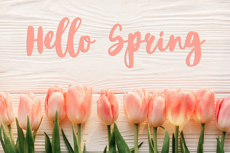 hallo lente tekst teken, mooie roze tulpen op witte rustieke houten achtergrond plat lag. bloemen in zacht ochtendzonlicht met ruimte voor tekst. wenskaart concept Stockfoto