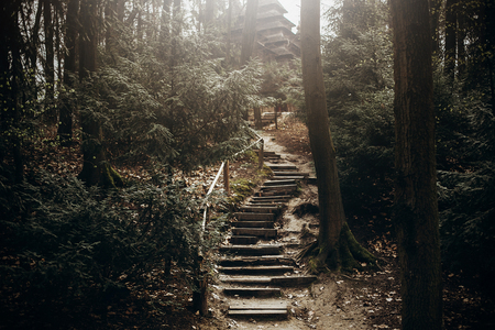 Nature stairs path in the mountains, stone stairway for hiking leading to christian church in Norway, rustic forest landscape, adventure concept
