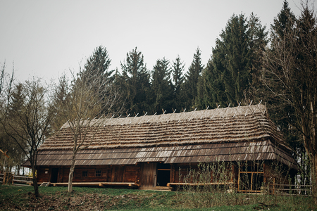 Rustic, wooden barn at countryside farm, old scandinatian stable house with thatch roof in national park woods, farming concept Stock Photo