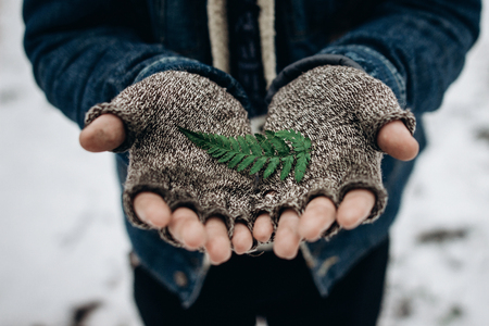 stylish hipster traveler holding green leaf fern iin hands, save the earth concept. environment protection. wanderlust and adventure concept in winter forest.