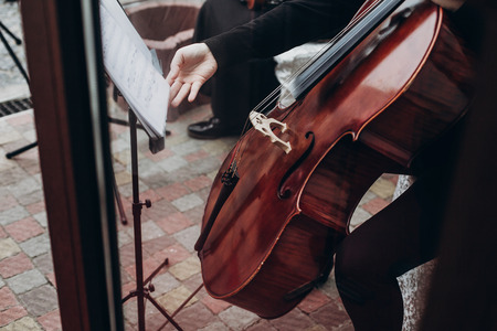musician playing on contrabass at luxury wedding reception. string quartet performing at expensive wedding ceremony. bass and chords. performance and entertainment. space for text Stock Photo