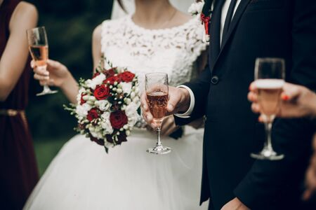 bride and groom toasting with champagne glasses at wedding reception. gorgeous wedding couple newlyweds cheering having fun and drinking
