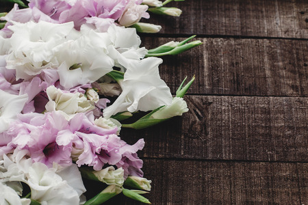 beautiful pink and white gladioluses on rustic wooden background flat lay. colorful gladioli on rustic brown wood, space for text, holiday greeting card. floral spring image