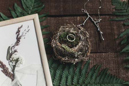 wedding rustic boutonniere and wedding rings in bird nest on wooden background with fern leaves. rustic barn wedding concept. top view.