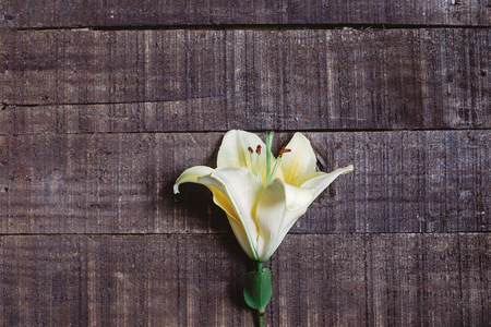 beautiful yellow lily flower on rustic wooden background. gorgeous bloom minimalistic  on rustic wood backdrop. space for text. greeting card. celebration concept. unusual spring image.