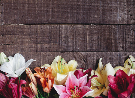 beautiful colorful lily flower on rustic wooden background. gorgeous bloom lilies on rustic wood backdrop. space for text. greeting card. celebration concept. spring background, top view Фото со стока