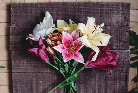 bright spring flowers on rustic background. hello spring. women or mothers day. beautiful colorful lily flower on wooden background. gorgeous bloom lilies space for text. greeting card