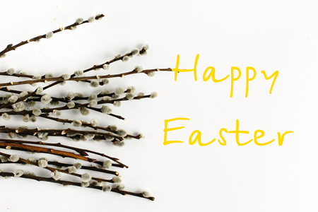 bunch willow buds isolated on white background, happy easter text sign, holiday card concept