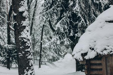 雪、休暇の目的地、旅行の概念で覆われた冬の森、素朴な木製コテージ スカンジナビア国立公園内に位置するノルウェーの古い木製キャビン 写真素材