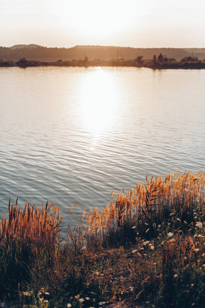 beautiful sunset at lake in summer evening. water grass and sky in sunshine, peaceful moment. tranquil. space for text Archivio Fotografico