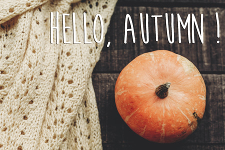 hello autumn text, greeting card. simple fall image flat lay. beautiful pumpkin on sweater on rustic wooden background, top view. cozy autumn mood
