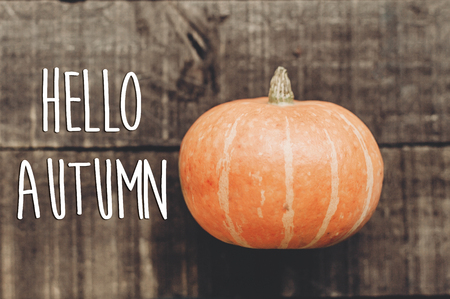 hello autumn text, greeting card. simple fall image flat lay. beautiful pumpkin  on rustic wooden background, top view. cozy autumn mood