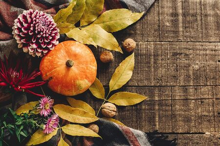autumn pumpkin with leaves and walnuts and dahlias on stylish scarf top view, space for text. seasonal greetings, fall holidays. happy halloween or thanksgiving flat lay. harvest time. cozy mood