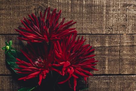 Bello dahlias asters su sfondo rustico di legno pianeggiante. fiori di autunno rosso vista superiore, saluti stagionali. biglietto di auguri floreale con spazio per il testo. Archivio Fotografico - 87432121