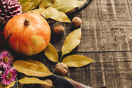 Zucca di autunno con foglie e noci e dalie su sciarpa elegante, spazio per il testo. saluti stagionali, ferie di autunno. felice halloween o immagine di ringraziamento. tempo di raccolta. umore accogliente Archivio Fotografico - 87432130