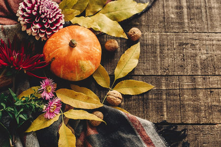 happy halloween or thanksgiving flat lay. pumpkin with leaves and walnuts and dahlias on stylish scarf top view, space for text. seasonal greetings, autumn fall holidays. harvest time. cozy mood