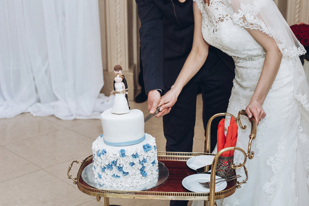 wedding couple cutting together delicious wedding cake with blue flowers and figurines on top, bride and groom tied forever concept at wedding reception in restaurant. luxury catering Stock Photo