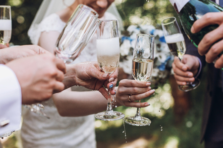 happy group of people toasting with champagne. woman holding glass of champagne. bride bridesmaids and groom groomsmen having fun. holiday celebration. christmas Stock Photo