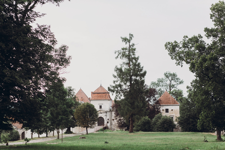 Ancient castle surrounded by nature, old ukrainian castle fortress with metal gate and towers