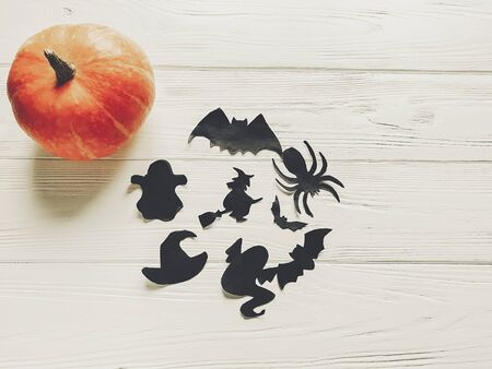 halloween. happy halloween concept. pumpkin with witch ghost bats and spider black decorations on white wooden background top view with space for text. cutouts for autumn holiday celebration Banco de Imagens