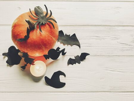 halloween flat lay. happy halloween concept. pumpkin with witch ghost bats and spider black decorations on white wooden background top view with space for text. cutouts for autumn holiday Banco de Imagens
